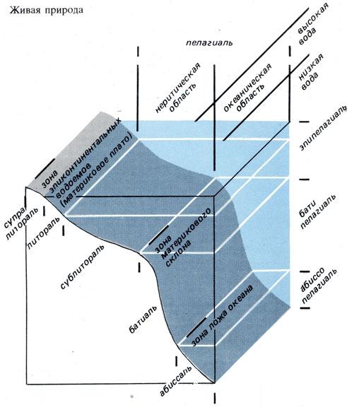 read Industrial Environmental Chemistry: Waste Minimization