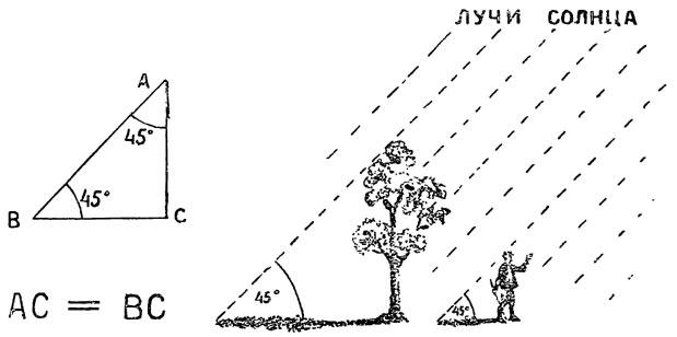 Рис. 44. Как проще всею с помощью тени узнать высоту любого предмета