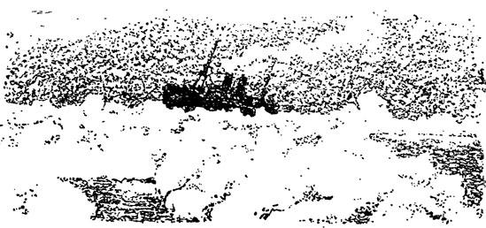 Рис. 60. Свободно-плавающее (дрейфующее) судно