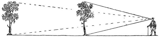 Рис. 74. Изменение угловой величины предметов в зависимости от расстояния