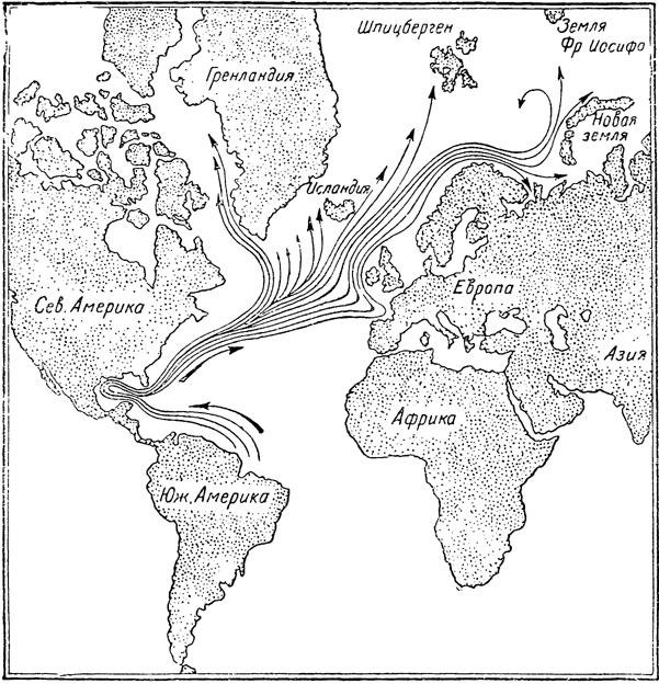 Карта течений Гольфстрима